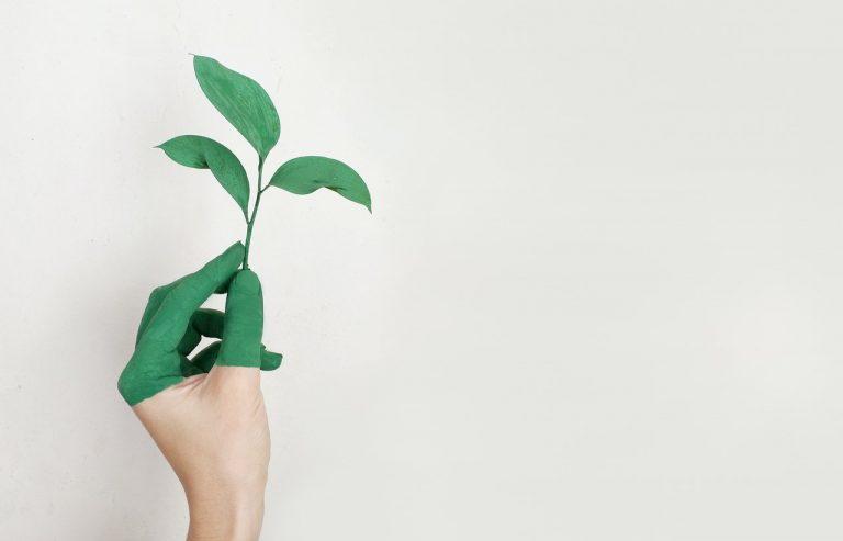 environmental-friendly concept